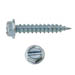 SLOTTED HEX WASHER SELF-PIERCING SCREW ZINC PLATED