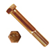 HEX CAP SCREW SILICON BRONZE